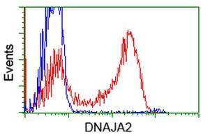 HEK293T cells transfected with either overexpress plasmid (Red) or empty vector control plasmid (Blue) were immunostained by anti-DNAJA2 antibody, and then analyzed by flow cytometry.