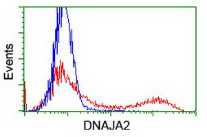 DNAJA2 Antibody - HEK293T cells transfected with either overexpress plasmid (Red) or empty vector control plasmid (Blue) were immunostained by anti-DNAJA2 antibody, and then analyzed by flow cytometry.