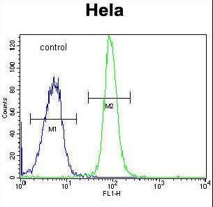 DONSON Antibody flow cytometry of HeLa cells (right histogram) compared to a negative control cell (left histogram). FITC-conjugated goat-anti-rabbit secondary antibodies were used for the analysis.