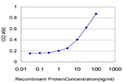 Detection limit for recombinant GST tagged DPP4 is approximately 1 ng/ml as a capture antibody.