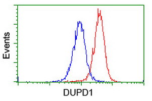 DUPD1 Antibody - Flow cytometry of Jurkat cells, using anti-DUPD1 antibody (Red), compared to a nonspecific negative control antibody (Blue).