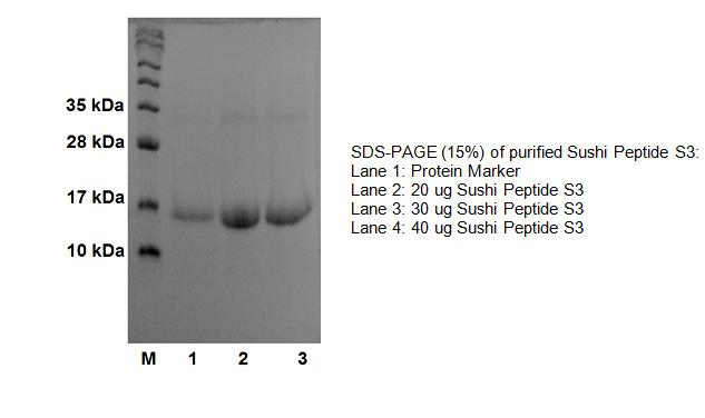 Sushi Peptide S3 Protein