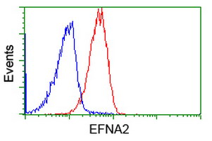 EFNA2 / Ephrin A2 Antibody - Flow cytometry of Jurkat cells, using anti-EFNA2 antibody (Red), compared to a nonspecific negative control antibody (Blue).