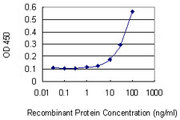 Detection limit for recombinant GST tagged ELK4 is 3 ng/ml as a capture antibody.