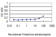 Detection limit for recombinant GST tagged ENO1 is approximately 0.3 ng/ml as a capture antibody.