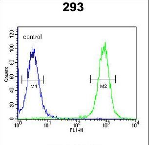 EPC2 Antibody - EPC2 Antibody flow cytometry of 293 cells (right histogram) compared to a negative control cell (left histogram). FITC-conjugated goat-anti-rabbit secondary antibodies were used for the analysis.