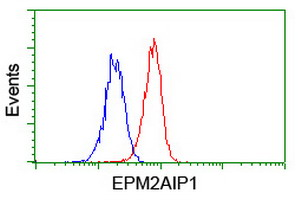 EPM2AIP1 Antibody - Flow cytometry of Jurkat cells, using anti-EPM2AIP1 antibody (Red), compared to a nonspecific negative control antibody (Blue).