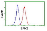 Flow cytometry of Jurkat cells, using anti-EPN2 antibody (Red), compared to a nonspecific negative control antibody (Blue).