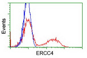 HEK293T cells transfected with either overexpress plasmid (Red) or empty vector control plasmid (Blue) were immunostained by anti-ERCC4 antibody, and then analyzed by flow cytometry.