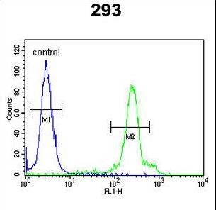 ERMN / Juxtanodin Antibody - ERMIN Antibody flow cytometry of 293 cells (right histogram) compared to a negative control cell (left histogram). FITC-conjugated goat-anti-rabbit secondary antibodies were used for the analysis.