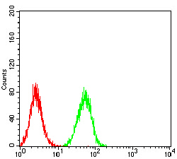 Flow cytometric analysis of Hela cells using ESRRA mouse mAb (green) and negative control (red).