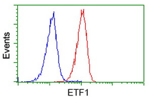 Flow cytometry of Jurkat cells, using anti-ETF1 antibody (Red), compared to a nonspecific negative control antibody (Blue).