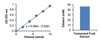 Ethanol Assay Kit standard curve and measurement of Ethanol in fermented fruit extract (Cherry extract, 5 ul, 50X diluted). Fruit extract was treated with Carrez Clarification Reagent for protein precipitation, spin filtered and diluted for the assay.