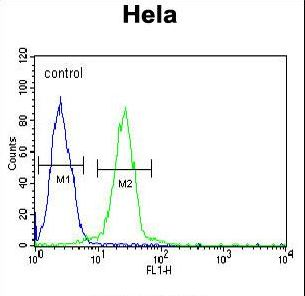 EWSR1 / EWS Antibody - EWSR1 Antibody flow cytometry of HeLa cells (right histogram) compared to a negative control cell (left histogram). FITC-conjugated goat-anti-rabbit secondary antibodies were used for the analysis.