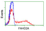 HEK293T cells transfected with either pCMV6-ENTRY FAHD2A (Red) or empty vector control plasmid (Blue) were immunostained with anti-FAHD2A mouse monoclonal, and then analyzed by flow cytometry.