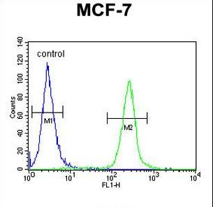 FA20A Antibody flow cytometry of MCF-7 cells (right histogram) compared to a negative control cell (left histogram). FITC-conjugated goat-anti-rabbit secondary antibodies were used for the analysis.