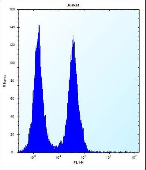 FAM8A1 Antibody - FA8A1 Antibody flow cytometry of Jurkat cells (right histogram) compared to a negative control cell (left histogram). FITC-conjugated donkey-anti-rabbit secondary antibodies were used for the analysis.