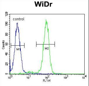 FBXO9 Antibody flow cytometry of WiDr cells (right histogram) compared to a negative control cell (left histogram). FITC-conjugated goat-anti-rabbit secondary antibodies were used for the analysis.