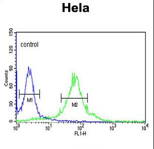 FKBP2 Antibody flow cytometry of HeLa cells (right histogram) compared to a negative control cell (left histogram). FITC-conjugated goat-anti-rabbit secondary antibodies were used for the analysis.