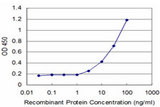Detection limit for recombinant GST tagged FOSL2 is approximately 3 ng/ml as a capture antibody.