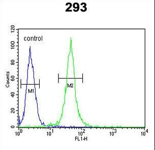 FOXC1 Antibody flow cytometry of 293 cells (right histogram) compared to a negative control cell (left histogram). FITC-conjugated goat-anti-rabbit secondary antibodies were used for the analysis.