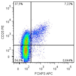 Intracellular staining of human peripheral blood cells (gated on CD4+ cells) with anti-FoxP3 (clone 3G3).