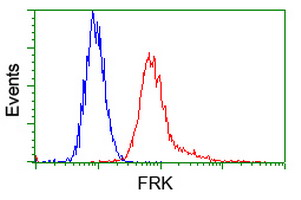 Flow cytometry of HeLa cells, using anti-FRK antibody, (Red) compared to a nonspecific negative control antibody (Blue).
