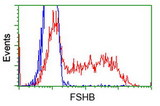 HEK293T cells transfected with either overexpress plasmid (Red) or empty vector control plasmid (Blue) were immunostained by anti-FSHB antibody, and then analyzed by flow cytometry.
