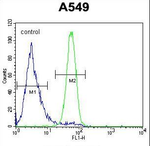 FSTL1 Antibody flow cytometry of A549 cells (right histogram) compared to a negative control cell (left histogram). FITC-conjugated goat-anti-rabbit secondary antibodies were used for the analysis.