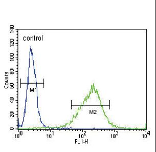 GABRA2 Antibody flow cytometry of NCI-H460 cells (right histogram) compared to a negative control cell (left histogram). FITC-conjugated goat-anti-rabbit secondary antibodies were used for the analysis.