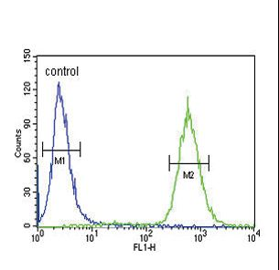 GDNF Antibody flow cytometry of 293 cells (right histogram) compared to a negative control cell (left histogram). FITC-conjugated goat-anti-rabbit secondary antibodies were used for the analysis.