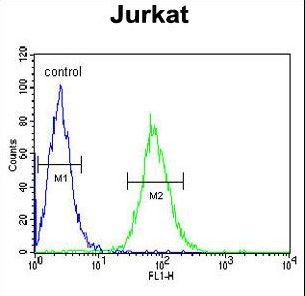 GGNBP2 Antibody flow cytometry of Jurkat cells (right histogram) compared to a negative control cell (left histogram). FITC-conjugated goat-anti-rabbit secondary antibodies were used for the analysis.
