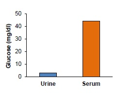 Quantitation of Glucose in human urine & serum. Urine & serum samples were deproteinized using a 10 kDa Spin Column (10000xg, 10 min, 4°C). Urine filtrate (20 µl) & serum filtrate (1 µl) were spiked with a known amount of glucose as internal standard (4 nmol). Urine: 3.00 ± 0.4 mg/dl; Serum: 44.2 ± 6.7 mg/dl.