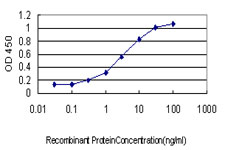 Detection limit for recombinant GST tagged GMPS is approximately 0.1 ng/ml as a capture antibody.