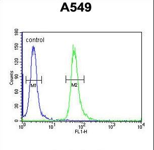 GNAT3 Antibody flow cytometry of A549 cells (right histogram) compared to a negative control cell (left histogram). FITC-conjugated goat-anti-rabbit secondary antibodies were used for the analysis.