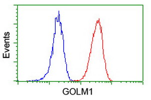 Flow cytometry of Jurkat cells, using anti-GOLM1 antibody (Red), compared to a nonspecific negative control antibody (Blue).