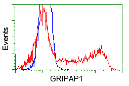 HEK293T cells transfected with either pCMV6-ENTRY GRIPAP1 (Red) or empty vector control plasmid (Blue) were immunostained with anti-GRIPAP1 mouse monoclonal, and then analyzed by flow cytometry.