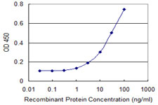 GRM8 / MGLUR8 Antibody - Detection limit for recombinant GST tagged GRM8 is 0.3 ng/ml as a capture antibody.