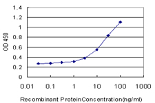 GRN / Granulin Antibody - Detection limit for recombinant GST tagged GRN is approximately 1 ng/ml as a capture antibody.