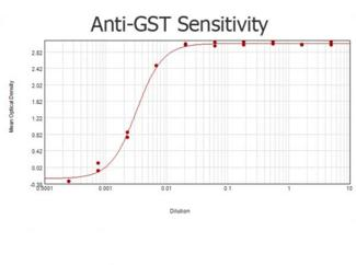 GST / Glutathione S-Transferase Antibody - ELISA results of purified Goat anti-GST Antibody Biotin Conjugated tested against purified GST. Each well was coated in duplicate with 1.0 µg of GST  The starting dilution of antibody was 5µg/ml and the X-axis represents the Log10 of a 3-fold dilution. This titration is a 4-parameter curve fit where the IC50 is defined as the titer of the antibody. Assay performed using 3% fish gelatin as blocking buffer, Streptavidin Peroxidase Conjugated and TMB substrate