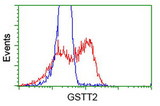 HEK293T cells transfected with either overexpress plasmid (Red) or empty vector control plasmid (Blue) were immunostained by anti-GSTT2 antibody, and then analyzed by flow cytometry.