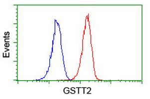 GSTT2 Antibody - Flow cytometry of Jurkat cells, using anti-GSTT2 antibody (Red), compared to a nonspecific negative control antibody (Blue).