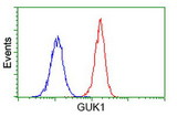 Flow cytometry of Jurkat cells, using anti-GUK1 antibody (Red), compared to a nonspecific negative control antibody (Blue).