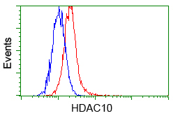 Flow cytometry of HeLa cells, using anti-HDAC10 antibody, (Red) compared to a nonspecific negative control antibody (Blue).