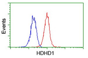 Flow cytometry of Jurkat cells, using anti-HDHD1 antibody (Red), compared to a nonspecific negative control antibody (Blue).