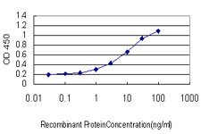 Detection limit for recombinant GST tagged HEYL is approximately 1 ng/ml as a capture antibody.
