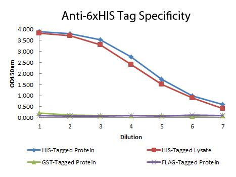 His Tag Antibody - ELISA of Mouse anti-6xHIS Tag Antibody. Antigen: HIS-tagged purified protein and E. coli cell lysates expressing HIS-Tagged construct, GST- and RON-tagged purified proteins. Coating amount: 0.15ug per welll. Primary antibody: 6xHIS Tag antibody at 100ug/mL. Dilution series: 2-fold. Mid-point concentration: 200ng/mL. Secondary antibody: Peroxidase mouse secondary antibody at 1:10,000. Substrate: TMB