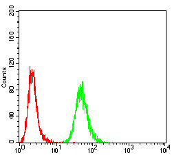HIST2H3C Antibody - Flow cytometric analysis of *** cells using *** mouse mAb (green) and negative control (red).