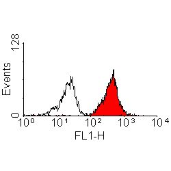 Flow cytometry of human peripheral blood lymphocytes with Mouse anti-Human HLA-A2: endotoxin low This image was taken for the unmodified form of this product. Other forms have not been tested.