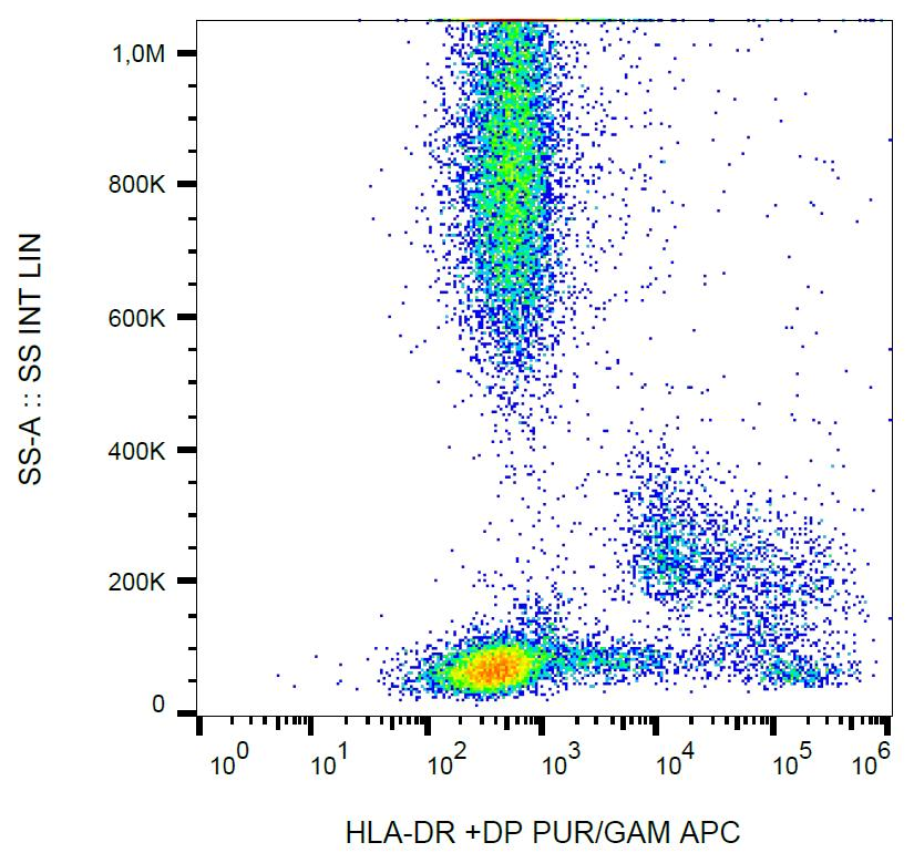 Surface staining of human peripheral blood with anti-HLA-DR+DP (HL-38) purified, GAM-APC.